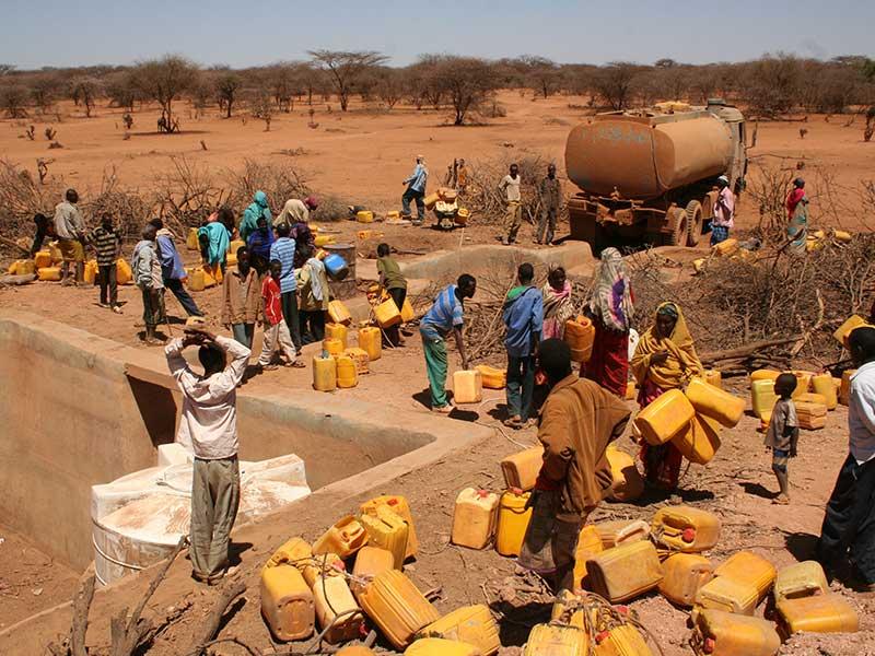 Somali-politics